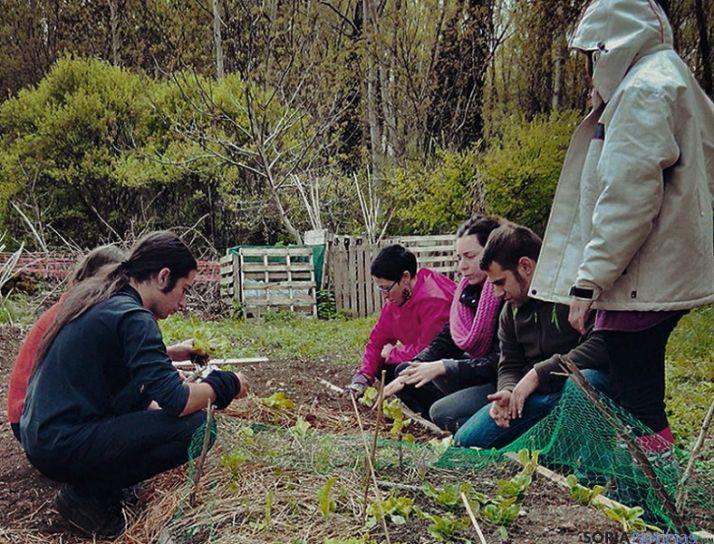 Actividades hortícolas en Arbujuelo.