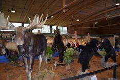 La feria ofrece una espectacular muestra de animales salvajes