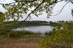 Imágenes de la ruta por las lagunas de Tradajos y Alconaba./SN