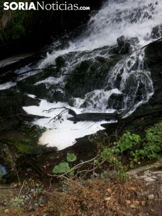 La Cascada de las Truchas, en el Cañón del Val./SN