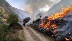 Un operario de la Brif de Tabuyo en uno de los incendios en León. /Brif Tabuyo