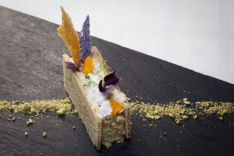 HOTELVIRREY PALAFOX-Pastel de hongos