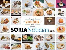 Tapa micológica Soria 2017