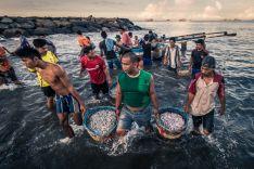 Fotografías premiadas en el IV Certamen Internacional de Fotografía de la Dieta Mediterránea 'Fray Luis de Berlanga'.