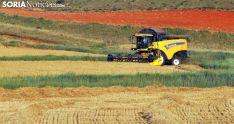 Una cosechadora en labores en un campo de la provincia. /SN