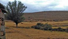 El monte donde está previsto el parque. A la derecha, la torre de medición.
