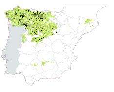 Mapa con el censo nacional de lobos en la Península Ibérica. /Jta.