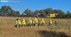 Personal anti incendios de la Junta en un siniestro en la provincia soriana. /SN