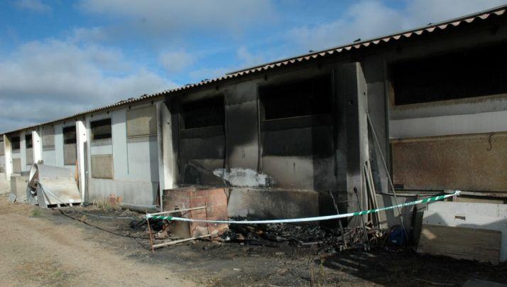 Imagen de la explotación tras el incendio. /GC
