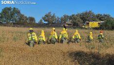 Operarios del servicio anti-incendios en un siniestro en Golmayo. /SN